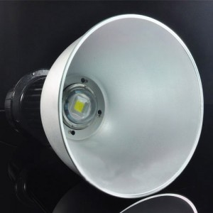 100W 60D LED Flood Light